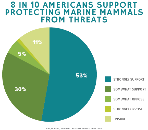 8 IN 10 AMERICANS SUPPORT PROTECTING MARINE MAMMALS FROM THREATS