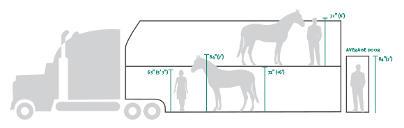 Horse Trailer Proportions
