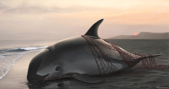 Vaquita! - Illustration by Fredrique Lucas