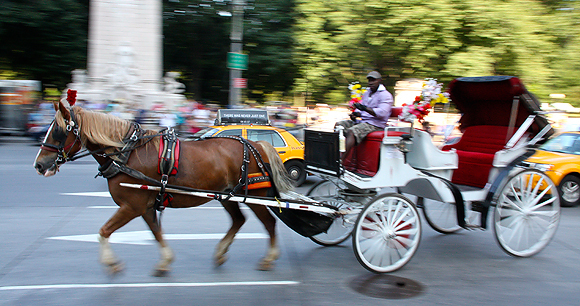 Urban horse carriages - Photo by Juhauitto