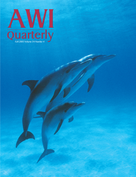 Fall 2005 AWI Quarterly Cover - Jeff Pantukhoff