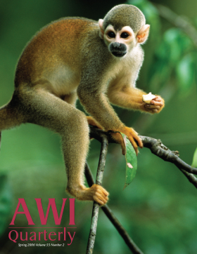Spring 2006 AWI Quarterly Cover - Photo by Sa Team/Foto Natura/Minden Pictures