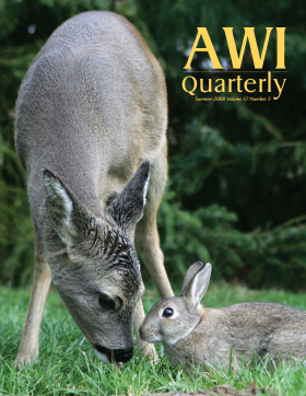 Summer 2008 AWi Quarterly Cover - Photo by Tanja Askani
