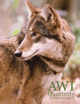 Summer 2014 AWI Quarterly - Cover Photo by Mark Newman/FLPA/Minden Pictures