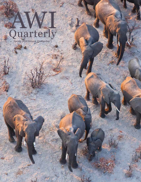Spring 2016 AWI Quarterly - Cover, Photo by Ben Osborne/Minden Pictures