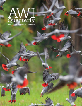Winter 2016 AWI Quarterly Cover - Photo by Cyril Ruoso