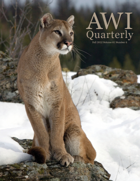 Fall 2012 AWI Quarterly Cover - Photo by Matthias Breiter