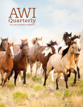 AWI Quarterly | Animal Welfare Institute