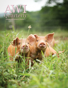 Summer 2012 AWI Quarterly Cover - Photo by Mike Suarez