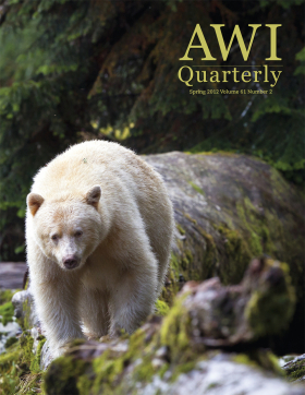 Spring 2012 AWI Quarterly Cover - Photo by Eric Sambol