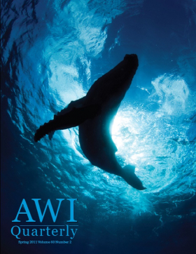 Spring 2011 AWI Quarterly Cover - Photo by Scott Portelli
