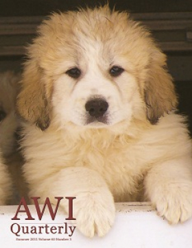 Summer 2011 AWI Quarterly Cover - Photo by Dr. Tom Gehring