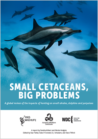 Small Cetaceans, Big Problems