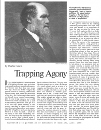 Trapping Agony Cover