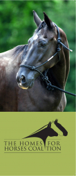 The Homes for Horses Coalition Brochure Cover