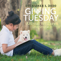 Help AWI Donate Books to Underserved Children on #GivingTuesday