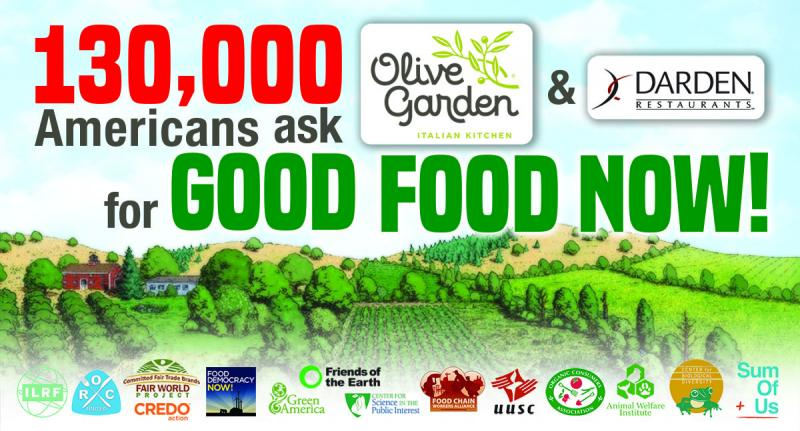 130 000 call on olive garden to adopt ethical 39 good food 39 practices animal welfare institute for Call the olive garden