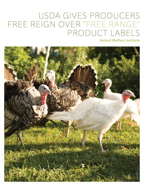 USDA Gives Producers Free Reign over 'Free Range' Product Labels
