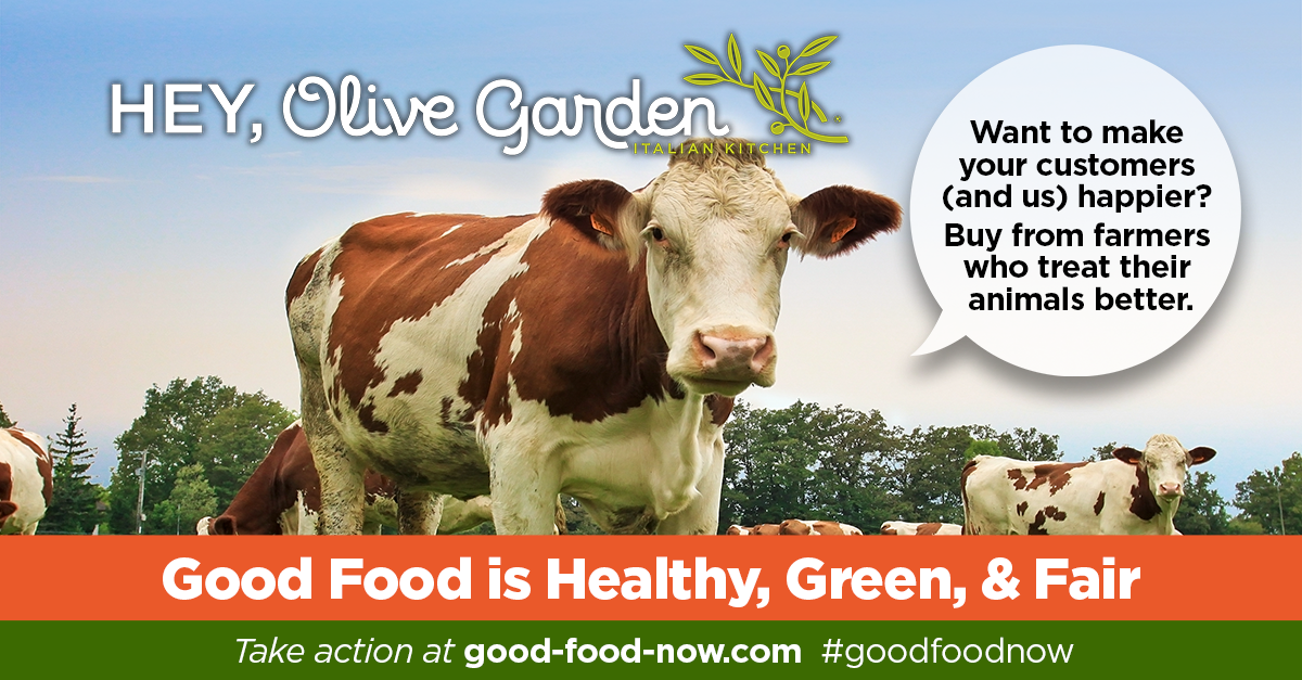 Join us on may 12 to ask olive garden for good food now animal welfare institute for Olive garden hyattsville md 20782