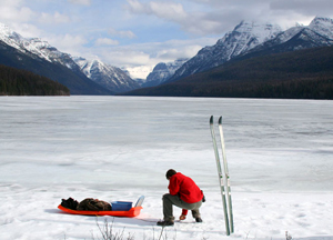 On snowy ground in Glacier National Park, the crew collected wolf scat to use in the biofence study the following summer - Photo Courtesy of David Ausband