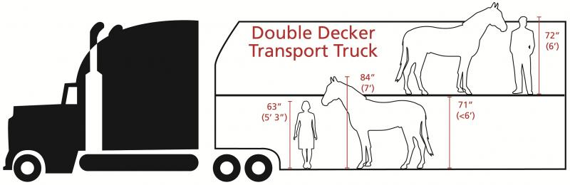 Horse Transportation Safety Act - Double Deck Trailers
