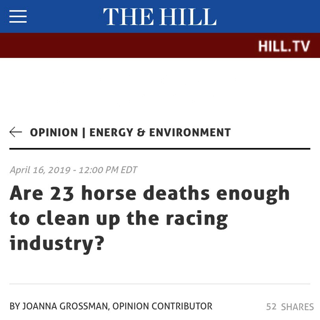 The Hill: Are 23 horse deaths enough to clean up the racing industry?