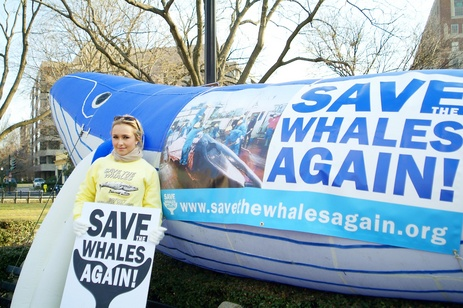 Hayden Panettiere poses in front of the whale with AWI's Susan Millward and The Whaleman Foundation's Jeff Pantukhoff. photo: www.hayden-collective.net